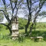 Le centre equestre, Tous en selle, à Rians dans le Var, le jardin